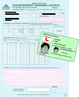 provisional drivers license card and paper counterpart